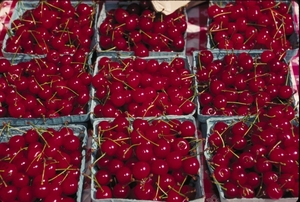 Cherries_(USDA_OPC).jpg