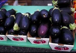 Eggplant_(USDA_OPC).jpg